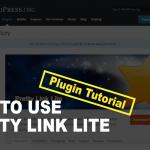 アフィリエイトに最適!短縮URL作成プラグイン【Pretty Link Light】の使い方